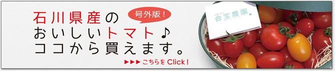 石川県のおいしいトマト買えます!